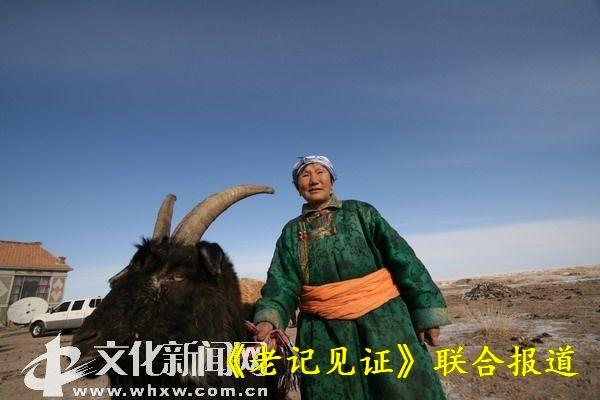 对于这位蒙古族老妈妈来说,羊是她一生最喜爱的家畜.